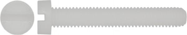 DIN 84/ISO 1207 Zylinderschraube Schlitz Polyamid