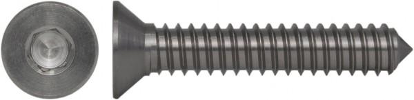 DIN 7972 C Senk-Blechschraube Innensechskant Titan-Schraube Grade 5