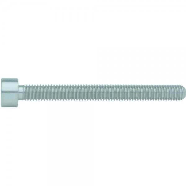 ISO 14579/ähnl. DIN 912 Zylinderschraube TORX Stahl