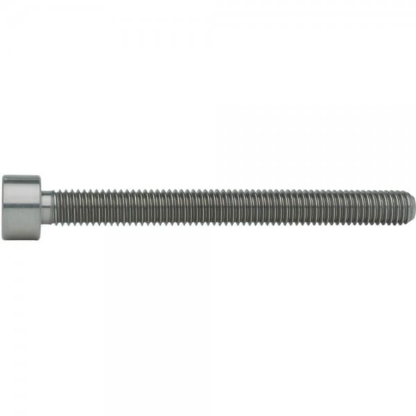 ISO 14579 Zylinderschraube Innensechsrund TX Titan Grade 5